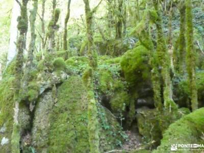 Selva de Irati - Puente del Pilar rutas o courel pueblos de navarra con encanto valle del paular pir